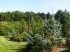 zahrady002