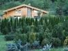 zahrady011